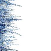 Blue Delphiniums LARGE