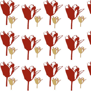 Red and beige tulips