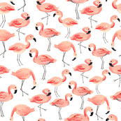Flamingo Party (Small)