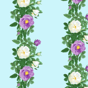 rose_border_purple_and_white_2_a_large_12x12_aqua_vert