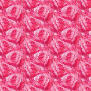 Hot Pink Roses
