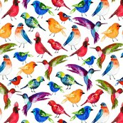 Watercolor_birds_revised_shop_thumb