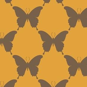 butterfly-geo-11