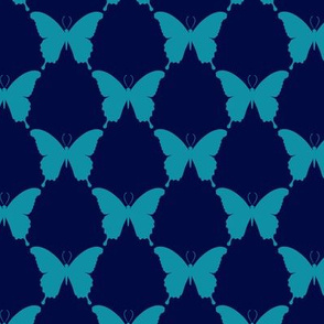 butterfly-geo-111B