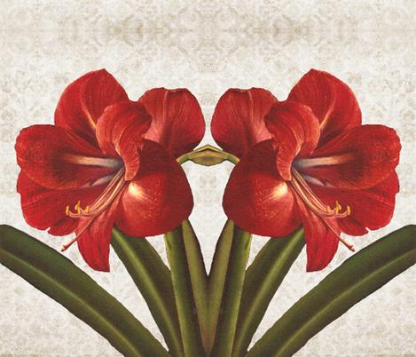 Amaryllis fabric by gesenared on Spoonflower - custom fabric
