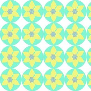 Daffodil on aqua