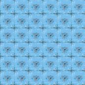 Smallbirds Blue
