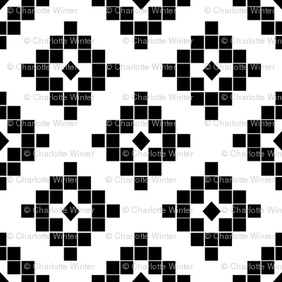 southwest black and white minimal design