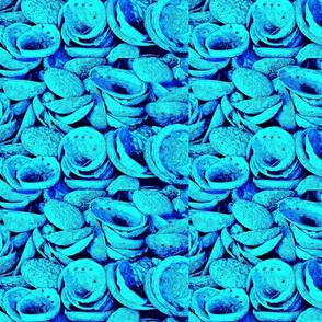 Abalone I