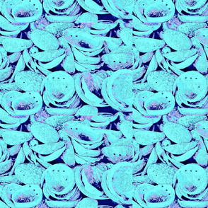 Abalone VII