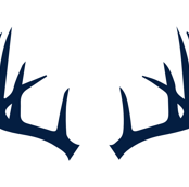 Navy Antlers // Northern Lights