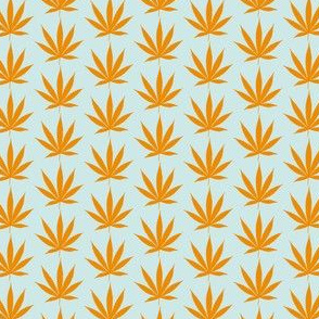 Orange weed