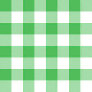 "1"" Spearmint green gingham"