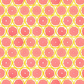 Grapefruit Galore