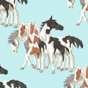 How Many Horses