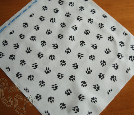 Trotting paw prints coordinate - white