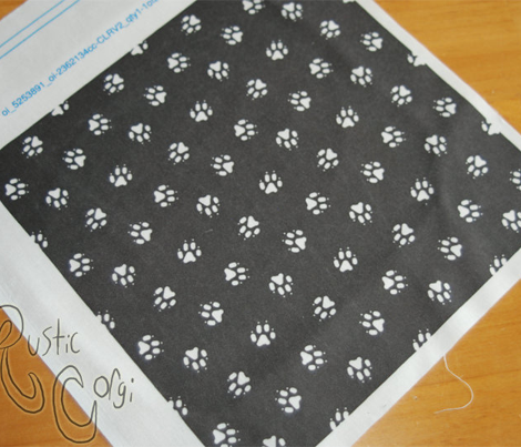 Trotting paw prints coordinate - black