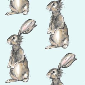 Large Rabbit on Blue