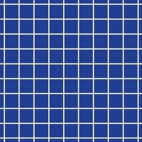 Navy Grid