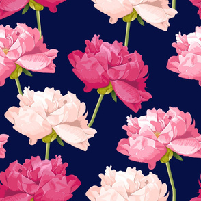 Peonies on navy