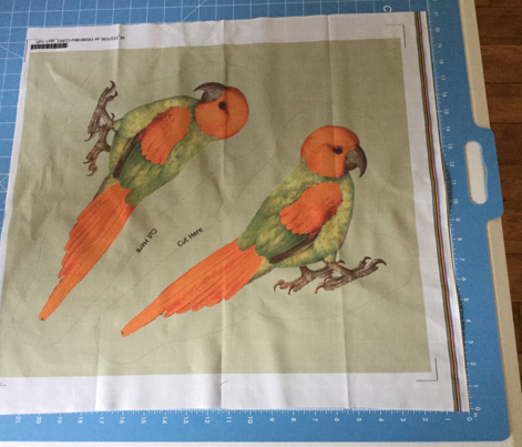 Parrot Plushie Pillow