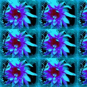 Teal & Lavender Cactus Flower