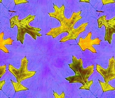 Roak_leaves_bigger._tif_shop_preview