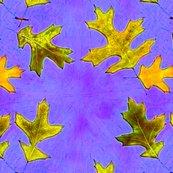 Roak_leaves_bigger._tif_shop_thumb