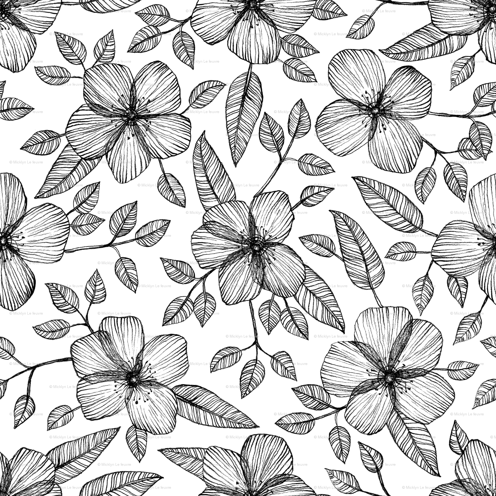 Black White Floral Line Drawing Pattern Wallpaper Micklyn
