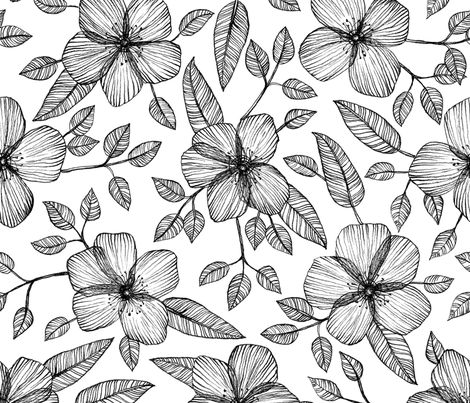 Black White Floral Line Drawing Pattern Fabric Micklyn Spoonflower