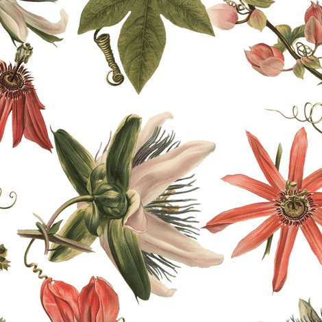 Tropicalia Floral fabric by peacoquettedesigns on Spoonflower - custom fabric