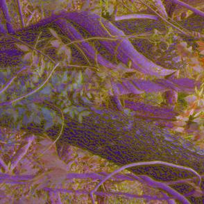Purple Vines Gold Leaves