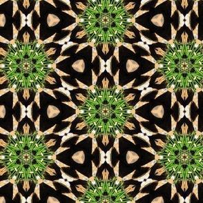 PineCone #4