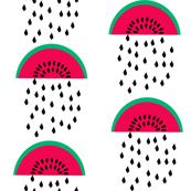 watermelon rain cute summer fruit tropical summer print for gender neutral hipster baby bedding leggings baby nursery