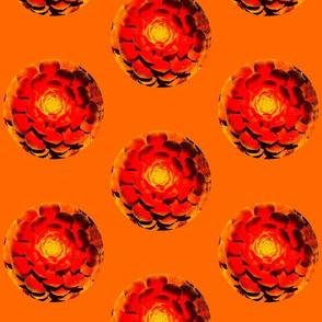 Orange & Yellow Circles