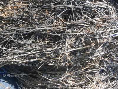 Nature's Woven Weathered Twigs (Ref. 1788b)