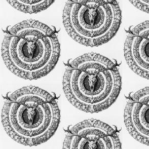 skullflowersbw