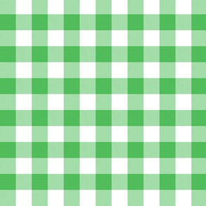 "5/8"" Spearmint green gingham check"