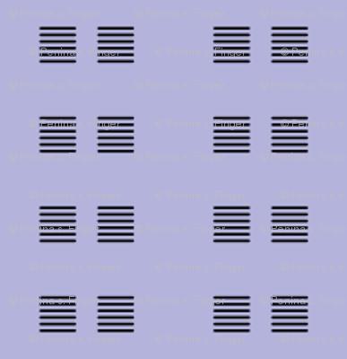 Flashbulbs Coordinate - lavender & black