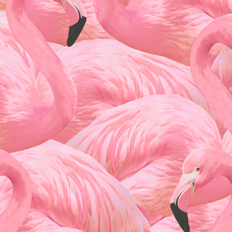 Flamingo Fever in Pink  fabric by willowlanetextiles on Spoonflower - custom fabric