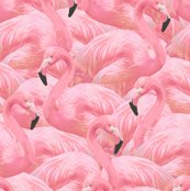 Rrpinkflamingo_shop_thumb