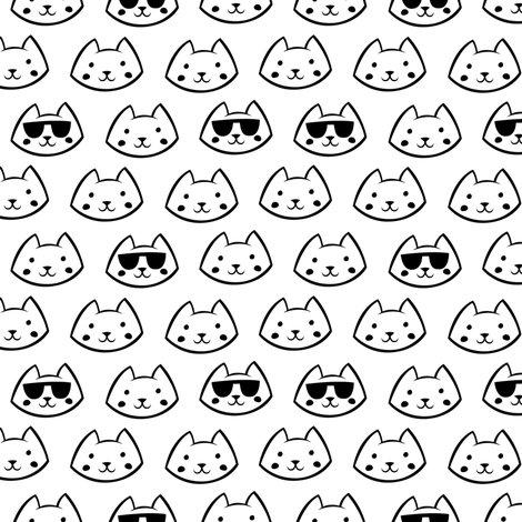 R51-081-coolcat_shop_preview