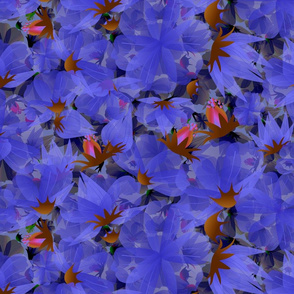 midnight blue transcucent flowers