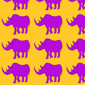 Rhinographic