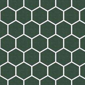 Honeycomb in Pine Green
