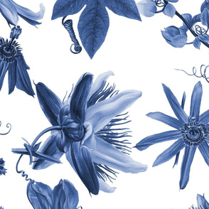 Tropicalia Floral ~ Blue and White
