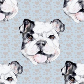 Happy Bulldog on gray hearts