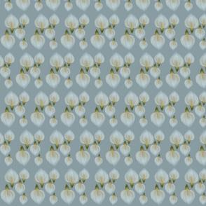 five lilys