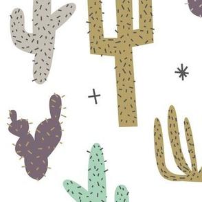 Boho Cactus Southwest Desert Nursery