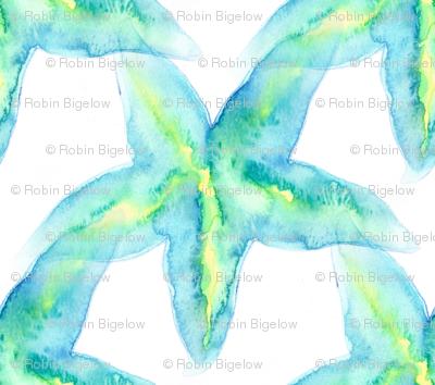 Small Starfish watercolor
